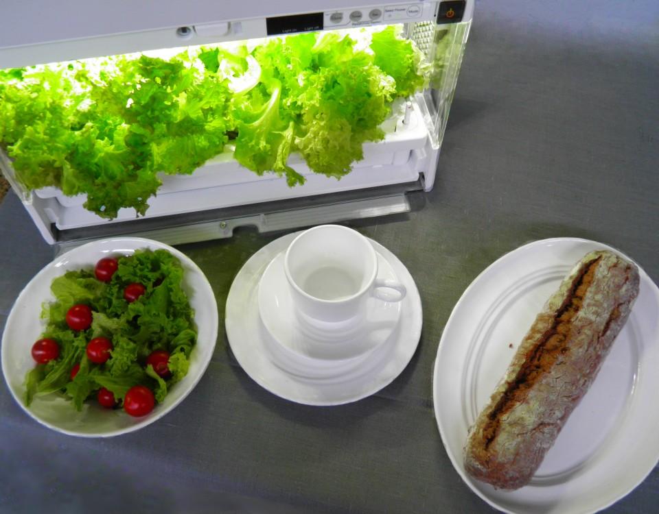 Propozycja aranżacji stołu: warzywa ze szklarni Green Farm prosto do sałatki!