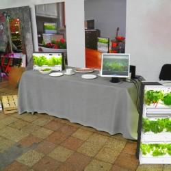 Slow Weekend: stoisko z prezentacją szklarni Green Farm.