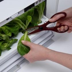 uprawa domowa, uprawa warzyw w domu, szklarnia domowa