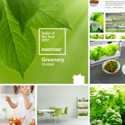 kolor roku 2017, kolor roku 2017 pantone, pantone greenery