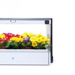 green farm, hydroponika, flower mode, mikroogrodnictwo, ogród domowy